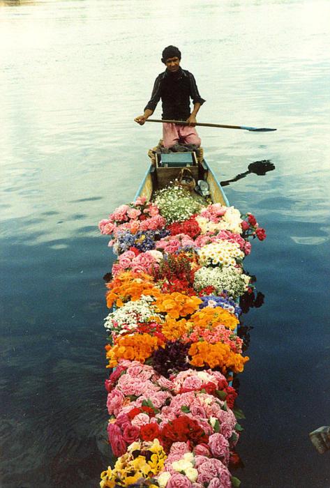 Цветы на лодке